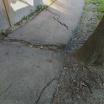 Sidewalk Repair at N42.33 E71.13