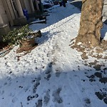 Unshoveled Sidewalk at 789 Washington St