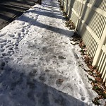 Unshoveled/Icy Sidewalk at 110 Middlesex Rd, Chestnut Hill
