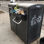Trash/Recycling at 42.34 N 71.12 W