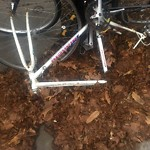 Abandoned Bike at 1067–1099 Beacon St
